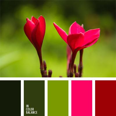 Палитра цветов для декора