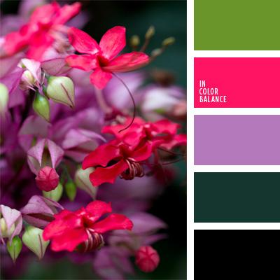 Цветовая палитра №158