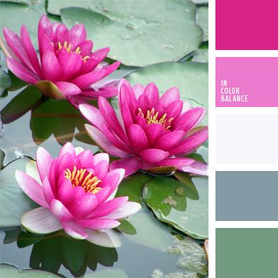 Цветовая палитра №204