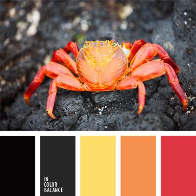 Цветовая палитра №211