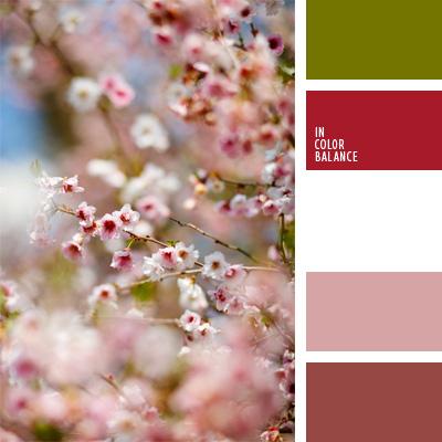 Цветовая палитра №243