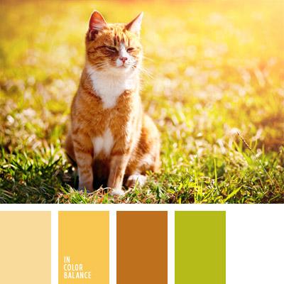 Цветовая палитра №295