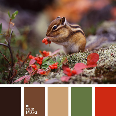 Цветовая палитра №297