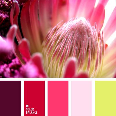 Цветовая палитра №43