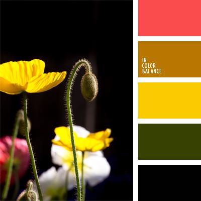 Цветовая палитра №58