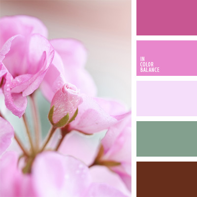 Цветовая палитра №71