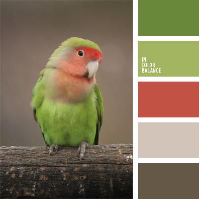 Цветовая палитра №398