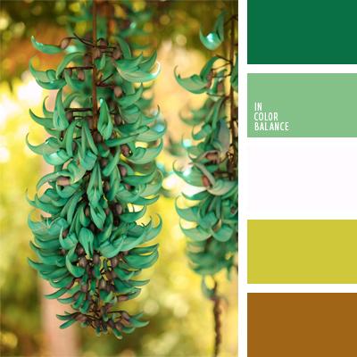 Цветовая палитра №423
