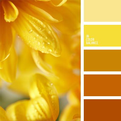 картинки желтых цветов