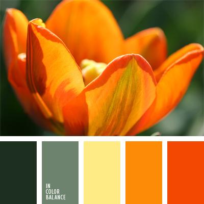 Цветовая палитра №496