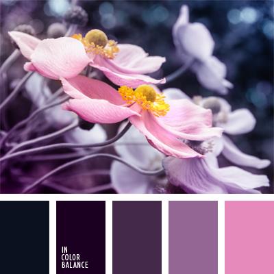 Цветовая палитра №537