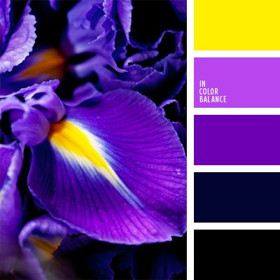 Цветовая палитра №539