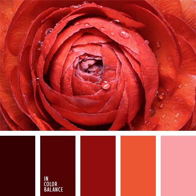 Цветовая палитра №548