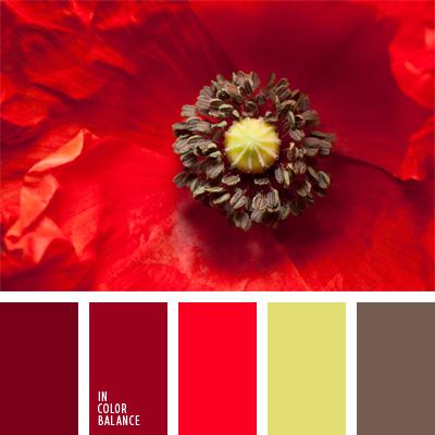 Цветовая палитра №555