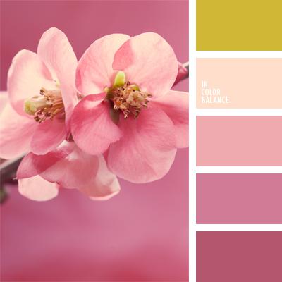 Цветовая палитра №557