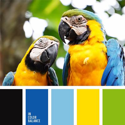 Цветовая палитра №560