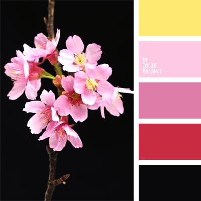 Цветовая палитра №566