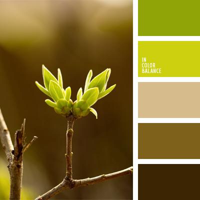 Цветовая палитра №570