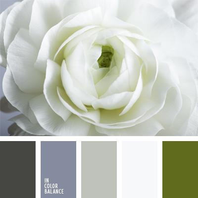 Цветовая палитра №572