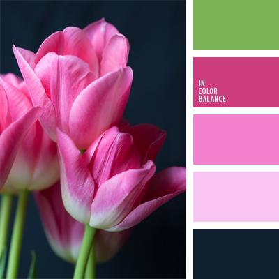 Цветовая палитра №597