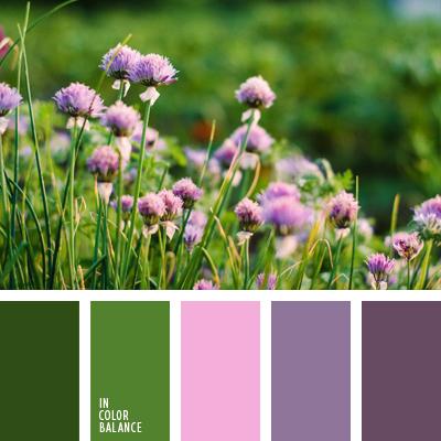 Цветовая палитра №605