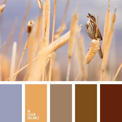 Цветовая палитра №623
