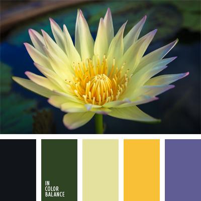 Цветовая палитра №626