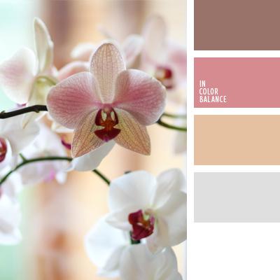 Цветовая палитра №635