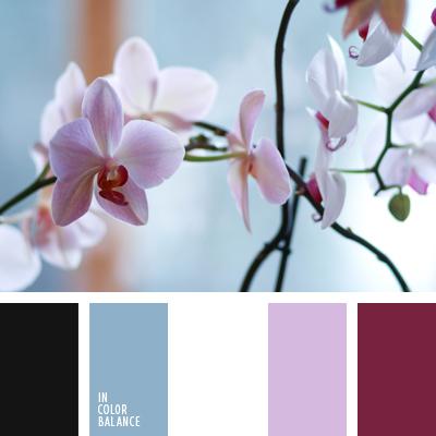 Цветовая палитра №637