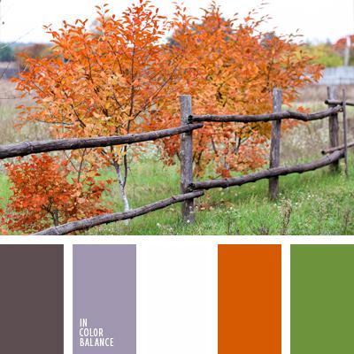 Цветовая палитра №641