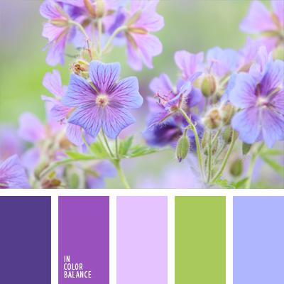 Цветовая палитра №647