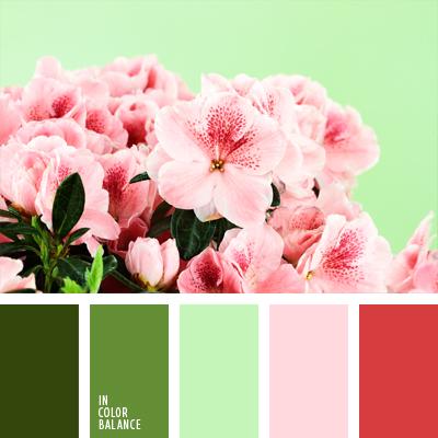 Цветовая палитра №653