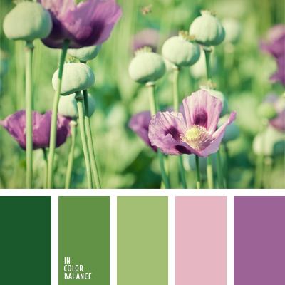 Цветовая палитра №666