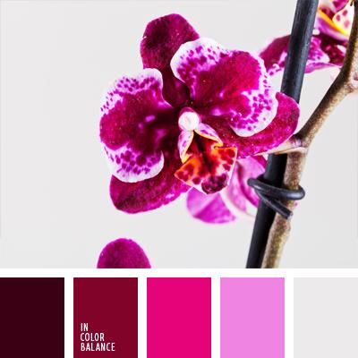 Цветовая палитра №677