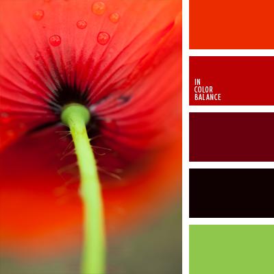 Цветовая палитра №704