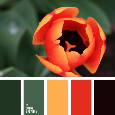 Цветовая палитра №707