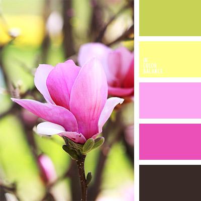 Цветовая палитра №781