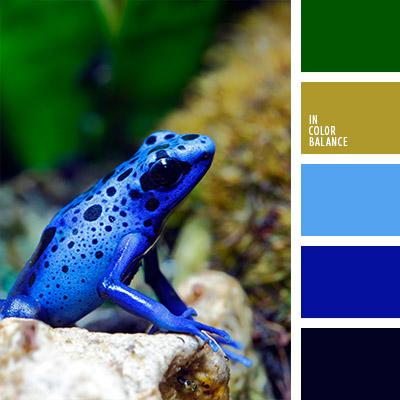 Цветовая палитра №787