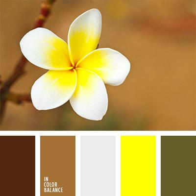 Цветовая палитра №793