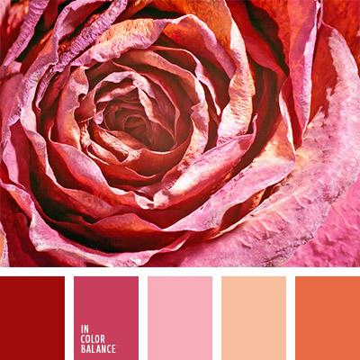 Цветовая палитра №798