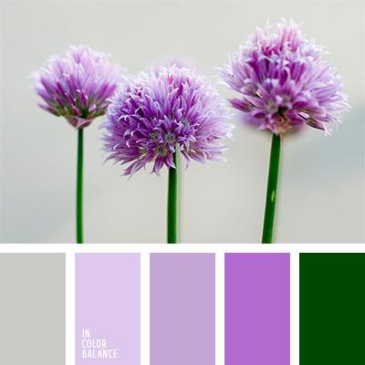 Цветовая палитра №803
