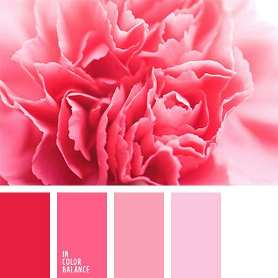 Цветовая палитра №804