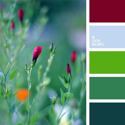 Цветовая палитра №808