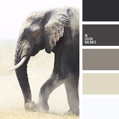 Цветовая палитра №815