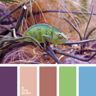 Цветовая палитра №876