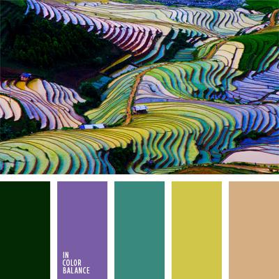 Цветовая палитра №879