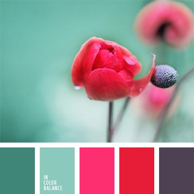 Цветовая палитра №886