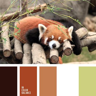 Цветовая палитра №898