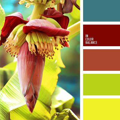 Цветовая палитра №899