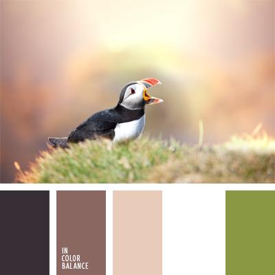 Цветовая палитра №908